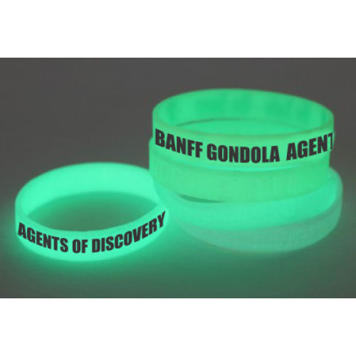 Wristband - Glow in the Dark